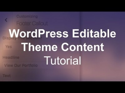 WordPress Custom Editable Theme Content (Image & Text) Tutor…