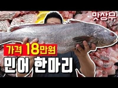 18만원짜리 거대민어 회로먹고 탕으로 먹기 민어부레 맛상무