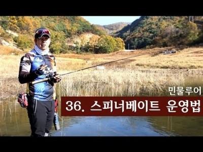 [파이어배스] 실전낚시- 스피너베이트 운영법. 배스낚시 초보강좌 36회 [피쉬앤피플]