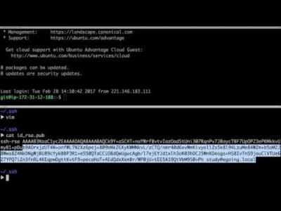 지옥에서 온 Git - 자동 로그인 (My Server)