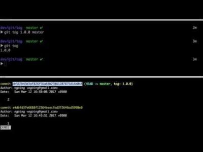 지옥에서 온 Git - 2 tag 1 (기본 사용법)