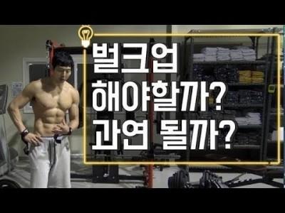 [고민]벌크업 과연 꼭 해야할까??::건강하게 벌크업하는 방법