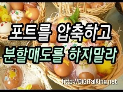 [주식] 분할매도를 하지 말아라(포트를 압축하여 계란을 한 바구니에 담아라)