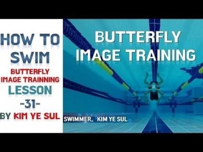 수영강습 접영편 #31  접영 이미지 트래이닝, BUTTERFLY IMAGE TRAINING [국가대표 수영…